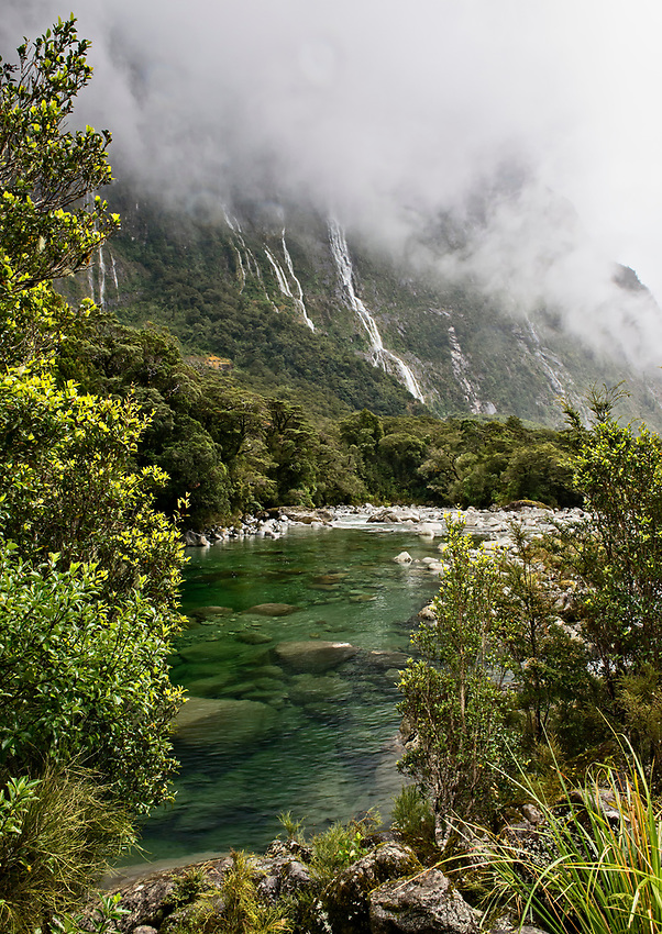 A view from the east end of Milford Sound, New Zealand, on a foggy day