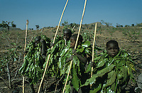 Young boys live isolated for 40 days wearing Lophyra leaves