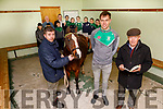 Na Gaeil GAA club launching their race night at the club on Sunday, which is going ahead on Saturday 30th November <br /> Front L to r: Eamon Browne, Beauty the horse, Jack Barry and Donal Lucey.