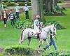 Charich before The Buzz Brauninger Arabian Distaff Handicap (grade 1) at Delaware Park on 9/5/15