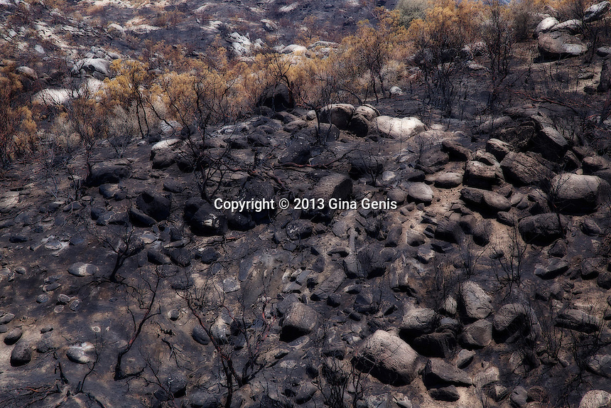 A hillside of burned rocks and trees after the Mountain Center fire. July 23, 2013