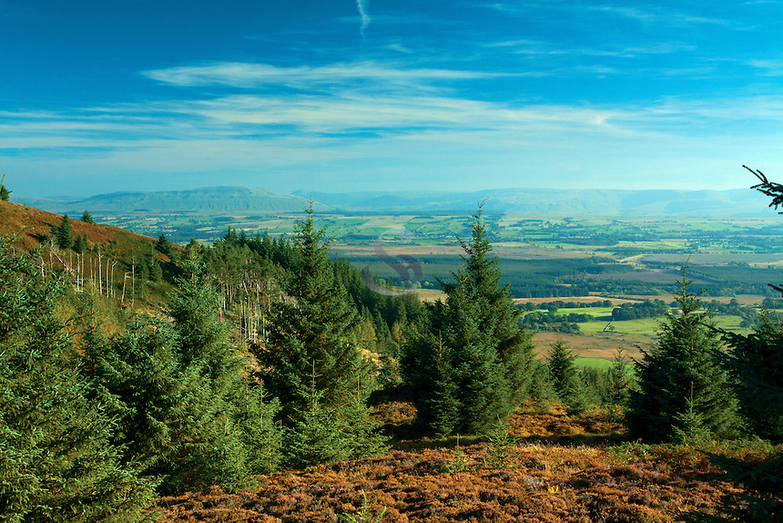 The Campsie Fells from Lime Craig above Aberfoyle, Loch Lomond and the Trossachs National Park, Stirlingshire