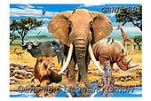 Howard, SELFIES, paintings+++++,GBHR881,#Selfies#, EVERYDAY ,elephants