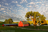 Red barn at sunrise with beautiful sky of clouds, Palouse region of eastern Washington.