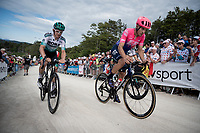 Alberto Bettiol (ITA/EF Education First) up the gravel section in the final stretch to the finish line up La Planche des Belles Filles<br /> <br /> Stage 6: Mulhouse to La Planche des Belles Filles (157km)<br /> 106th Tour de France 2019 (2.UWT)<br /> <br /> ©kramon