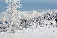 Winter landscape of hoarfrost covered trees at Turnagain Pass looking east with Chugach Mountains and Turnagain Arm in background  Kenai Penninsula Alaska  December 2015<br /> <br /> (C) Jeff Schultz/SchultzPhoto.com