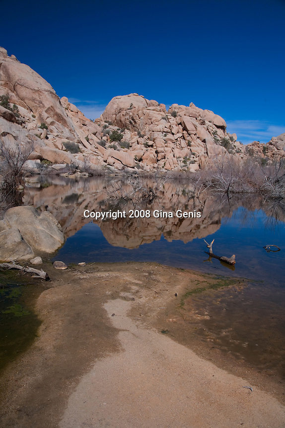 Vertical view of Barker Dam in Joshua Tree National Park with water from recent rains.
