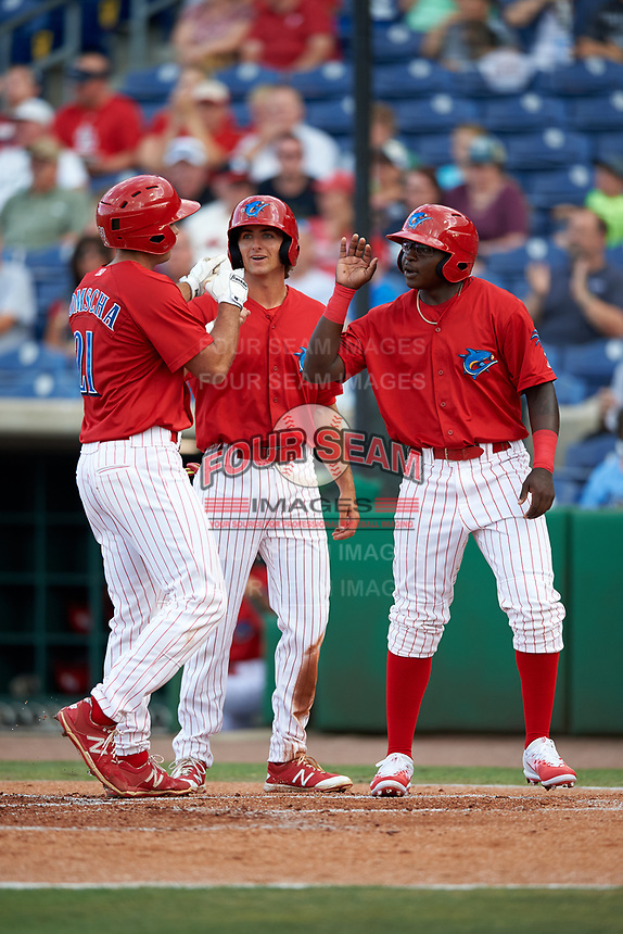 Clearwater Threshers first baseman Damek Tomscha (21) is congratulated by center fielder Mark Laird (6) and left fielder Cornelius Randolph as he crosses home plate after hitting a home run in the bottom of the fourth inning during a game against the Palm Beach Cardinals on April 14, 2017 at Spectrum Field in Clearwater, Florida.  Clearwater defeated Palm Beach 6-2.  (Mike Janes/Four Seam Images)