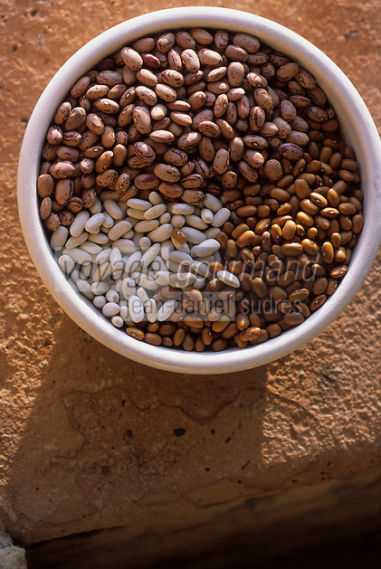 Europe/Italie/Ombrie : Cannellini - Haricots secs
