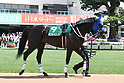 Horse Racing: Heian Stakes at Kyoto Racecourse
