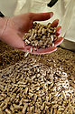 TO GO WITH STORY BY Arthur Beesley. DATE 8 FEB 2018. Wood Pellets made at Balcas Timber Ltd,  Laragh, Ballinamallard, Enniskillen Co. Fermanagh, Northern Ireland. Photo/Paul McErlane