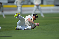 Wellington's Iain McPeake fields during day four of the Plunket Shield cricket match between the Wellington Firebirds and Canterbury at Basin Reserve in Wellington, New Zealand on Friday, 1 November 2019. Photo: Dave Lintott / lintottphoto.co.nz