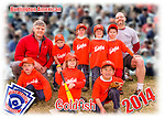 2014 Burlington American Goldfish