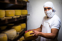 Portrait of a worker cleaning cheese while it matures at the cheese factory at Hacienda Zuleta, Imbabura, Ecuador, South America