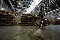 a worker sweeps coffee beans fallen from broken bags  in the main coffee mill in Addis Ababa, Ethiopia on Thursday January 25 2007.