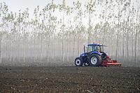 - la campagna nei pressi di Brescello (Reggio Emilia)<br /> <br /> - the countryside near Brescello (Reggio Emilia)
