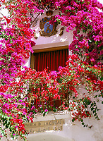 Spanien, Andalusien: Fenster umrahmt von bluehender Bougainvillea | Spain, Andalusia: Window Box in Bougainvillea