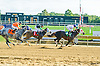 Galadriel Lady winning at Delaware Park on 10/5/16