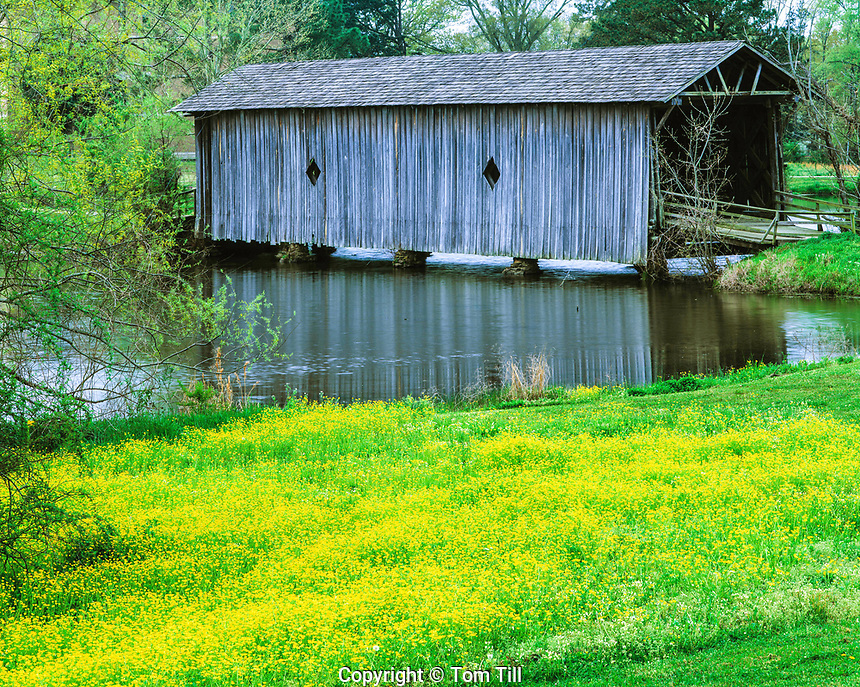 Alamuchee Covered Bridge, Livingston, Alabama
