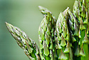 Asparagus, mid June.