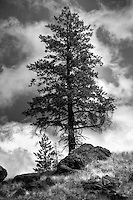 Rafting the Middle Fork of the Salmon River, Idaho (Black & White)