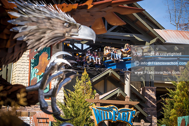 Wild Eagle, America's first wing coaster, is pictured in Dollywood theme park in Pigeon Forge, Tennessee Friday March 21, 2014. Located in the Knoxville-Smoky Mountains metroplex, Dollywood is a theme park owned by entertainer Dolly Parton and Herschend Family Entertainment.