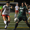 Nicole Hetzel #17 of Wheatley, left, scores her second goal of the match late in the first half of the Nassau County varsity girls soccer Class B final against Carle Place at Cold Spring Harbor High School on Friday, Nov. 3, 2017. Wheatley won by a score of 2-0.