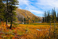 Autumn afternoon at Clayton Lake in the Flathead National Forest Montana