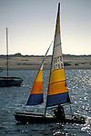 Small catamaran boat sailing on calm water in Morro Bay, California