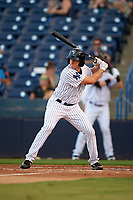Tampa Yankees designated hitter Jeff Hendrix (31) at bat during a game against the Palm Beach Cardinals on July 25, 2017 at George M. Steinbrenner Field in Tampa, Florida.  Tampa defeated Palm beach 7-6.  (Mike Janes/Four Seam Images)