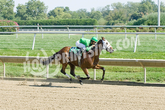 Vincero winning at Delaware Park on 9/5/09