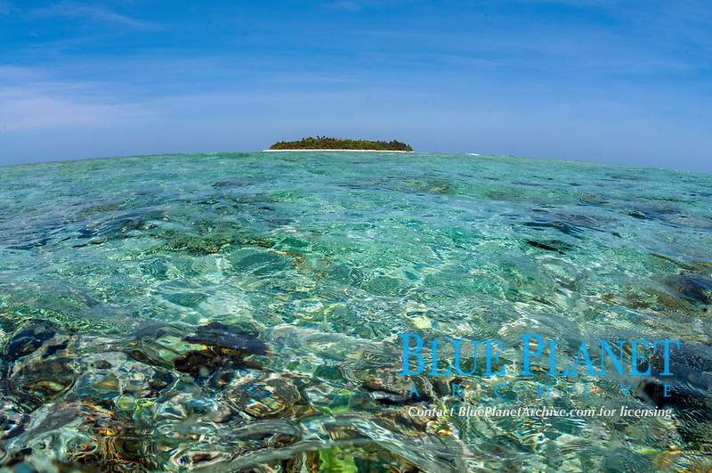 Island across shallow water, Abbot's Eddy dive site, Kadola Island, Penyu Group, Lucipara, Indonesia, Banda Sea, Pacific Ocean