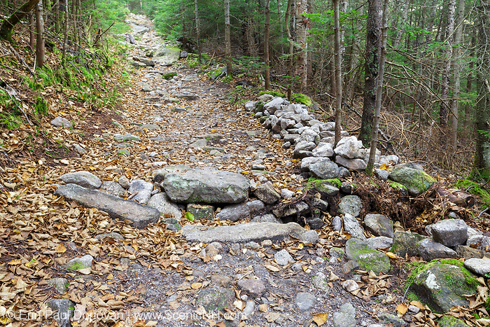 Water bar along the Mt Tecumseh Trail in the New Hampshire White Mountains in 2013. Update: 2018, this section of trail has been worked on and no longer looks like this.