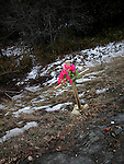 Roadside memorial for accident victim