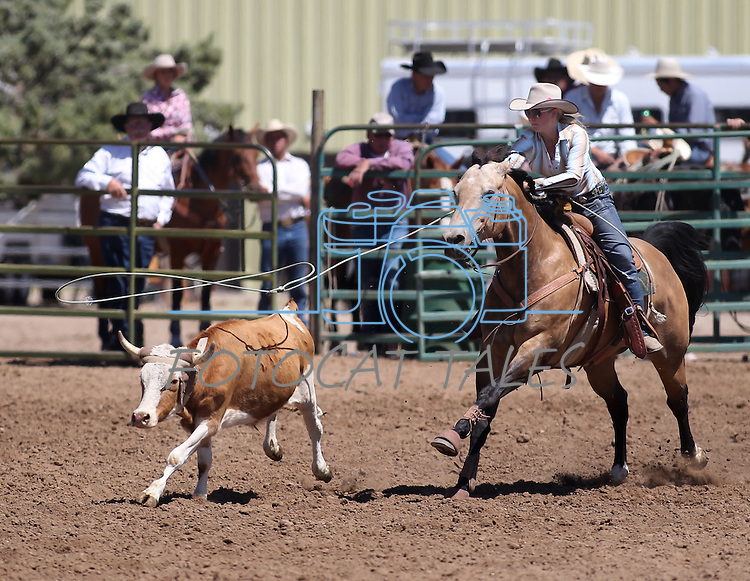 Julianne Funk competes in the women's steer stopping event the Minden Ranch Rodeo on Sunday, July 24, 2011, in Gardnerville, Nev. .Photo by Cathleen Allison