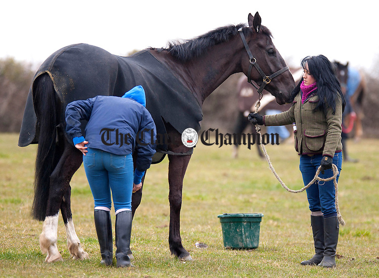 "310313.Aoibhinn Bannon and Lauren Whitcombe prepare ""Up For Review"" for the first race at Quakerstown Boston Point to Point races on Easter Sunday.Pic Arthur Ellis."