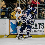 10 February 2017: University of New Hampshire Wildcat Forward Frankie Cefalu, a Sophomore from Buffalo, NY, in first period action against the University of Vermont Catamounts at Gutterson Fieldhouse in Burlington, Vermont. The Wildcats came from behind to defeat the Catamounts 4-2 in the first game of their 2-game Hockey East Series. Mandatory Credit: Ed Wolfstein Photo *** RAW (NEF) Image File Available ***