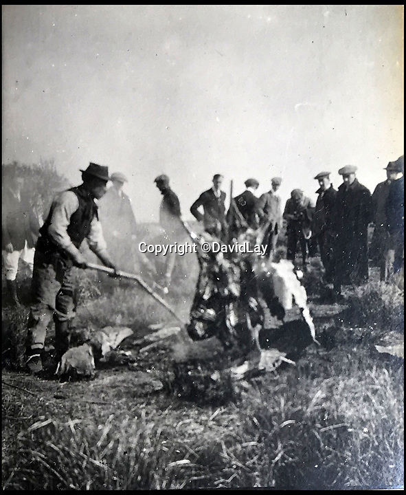 BNPS.co.uk(01202 558833)<br /> Pic: DavidLay/BNPS<br /> <br /> The team visited gaucho's and had a BBQ out on the Pampas.<br /> <br /> A rare photo album which documents the historic first British Lions' tour to Argentina in 1910 has been unearthed, and it shows rugby players were no strangers to a bit of mischief back then.<br /> <br /> The fascinating photos capture what went on both on and off the pitch as a squad of 16 English and three Scottish players embarked on a six match tour of the country culminating in a historic test match with Argentina.<br /> <br /> It was Argentina's first ever test match and the Lions emerged 28-3 winners in a game played at a polo ground in Buenos Aires.<br /> <br /> The photos capture the vibrant social side of the tour as the rugby players were not afraid to let their hair down.