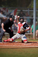 Ball State Cardinals catcher Chase Sebby (20) throws down to first base in front of umpire Justin Bertsche during a game against the Saint Joseph's Hawks on March 9, 2019 at North Charlotte Regional Park in Port Charlotte, Florida.  Ball State defeated Saint Joseph's 7-5.  (Mike Janes/Four Seam Images)