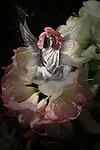 fairy sat on a flower