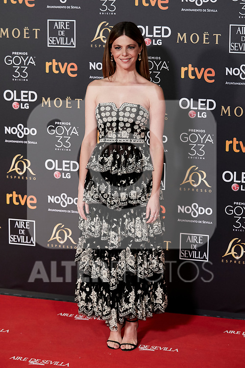 Manuela Velasco attends to 33rd Goya Awards at Fibes - Conference and Exhibition  in Seville, Spain. February 02, 2019. (ALTERPHOTOS/A. Perez Meca)
