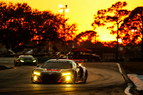 2017 IMSA WeatherTech SportsCar Championship<br /> Mobil 1 Twelve Hours of Sebring<br /> Sebring International Raceway, Sebring, FL USA<br /> Saturday 18 March 2017<br /> 86, Acura, Acura NSX, GTD, Oswaldo Negri Jr., Tom Dyer, Jeff Segal<br /> World Copyright: Michael L. Levitt/LAT Images<br /> ref: Digital Image levitt_seb_0317-30928b