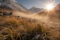 Golden morning light and rising sun over Mt Cook. From a misty & frosty Hooker Valley.