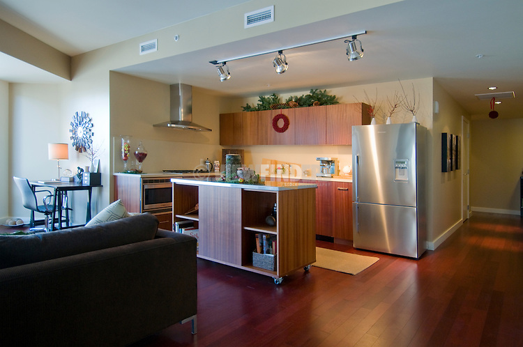 The Ardea model unit, South Waterfront, Portland, Oregon