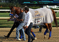 LOUISVILLE, KY - JUN 16: Triple Crown winner Justify is paraded at Churchill Downs, Louisville, Kentucky. (Photo by Mary M. Meek/Eclipse Sportswire/Getty Images)