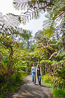 woman tourists, hiking rainforest trail, Hawaii Volcanoes National Park, Kilauea, Big Island, Hawaii, USA, MR