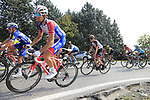 The peloton including Sebastien Reichenbach (SUI) Groupama-FDJ and Dan Martin (IRL) UAE Team Emirates climb Colle Brianza during the 112th edition of Il Lombardia 2018, the final monument of the season running 241km from Bergamo to Como, Lombardy, Italy. 13th October 2018.<br /> Picture: Eoin Clarke | Cyclefile<br /> <br /> <br /> All photos usage must carry mandatory copyright credit (© Cyclefile | Eoin Clarke)
