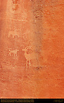Fremont Culture Petroglyphs, Zoomorph Panel, Bighorn Sheep, Bear and Dog, Fruita Petroglyph Panels, Capitol Reef National Park, South-Central Utah