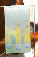 Chromatographic test to check acidity. Clos de l'Obac, Costers del Siurana, Gratallops, Priorato, Catalonia, Spain.