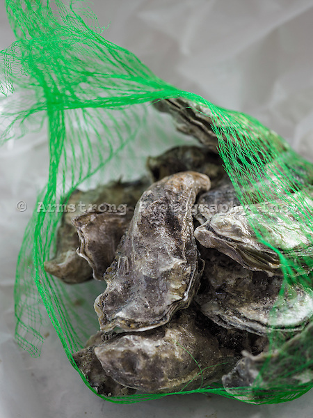 Live oysters from the market in a plastic mesh bag and butcher paper.